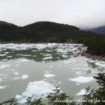 Punta Arenas e Puerto Natales