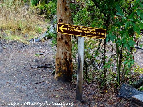 Bosque de Arrayanes 02