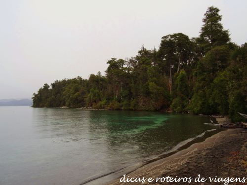 Bosque de Arrayanes 08