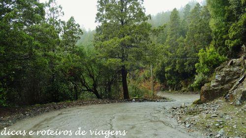 San Martin de los Andes 05