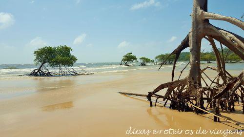 03 Fazenda Sao Jeronimo 06