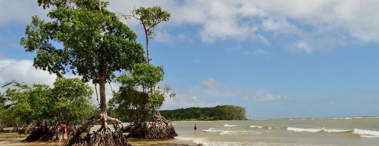 Praia de Barra Velha