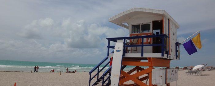 Como passear sem carro em Miami