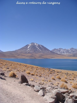 Lagunas Altiplânicas - Atacama - BlogDRV
