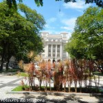 Prefeitura de Santos