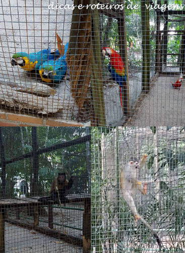 Hotel Zoo 03