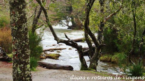 San Martin de los Andes 25