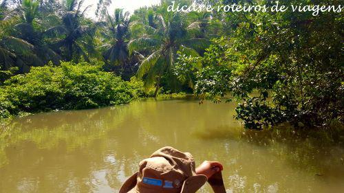 Ilha do Marajó 02
